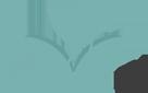 Stonebriar Spa logo Logo white Frisco TX