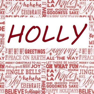 holly holiday spa package